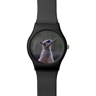Meerkat Reloj De Mano