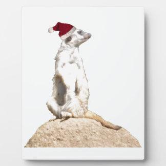 Meerkat Santa Photo Plaque