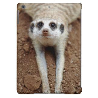 Meerkat (Suricata Suricatta) Cooling Down Case For iPad Air