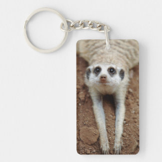 Meerkat (Suricata Suricatta) Cooling Down Keychain
