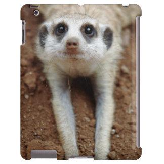 Meerkat (Suricata Suricatta) que se refresca abajo Funda Para iPad