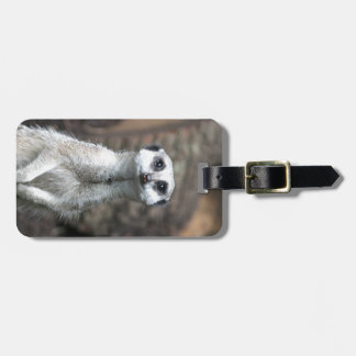 Meerkat Tag For Luggage