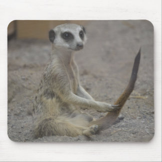 Meerkat Alfombrilla De Ratones