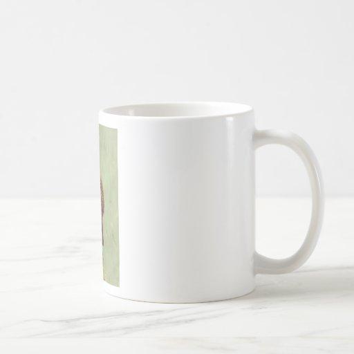 Meerkat Taza De Café