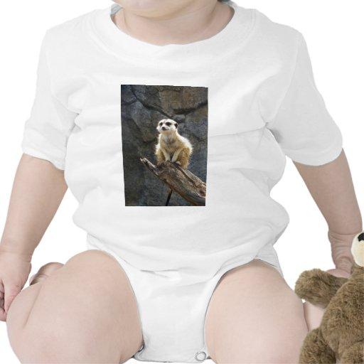 Meerkat Trajes De Bebé