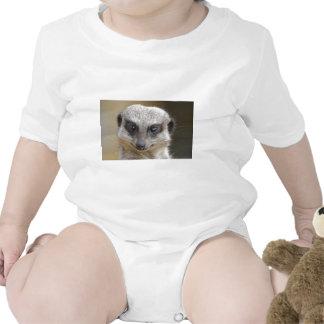 Meerkat Up Close T Shirt