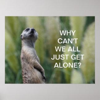 Meerkat wisdom - poster