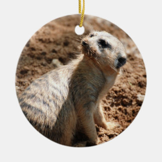 Meerkat with Dirty Face  Ornaments