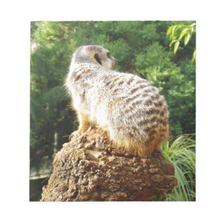 Meerkat With High Views, Notepad