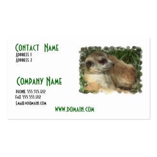 Meerkate Habitat Business Card