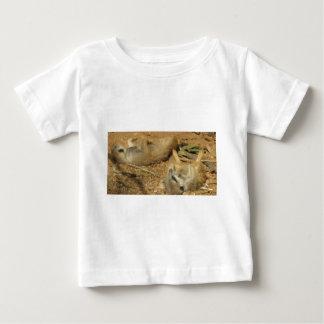 Meerkats adorable camisas