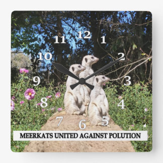 Meerkats Against Polution Square Wall Clock
