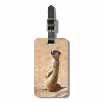 Meerkats are cool bag tag
