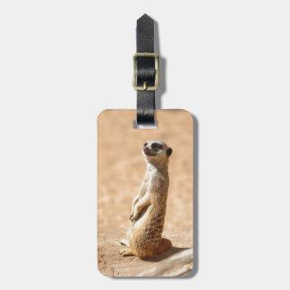 Meerkats are cool bag tag