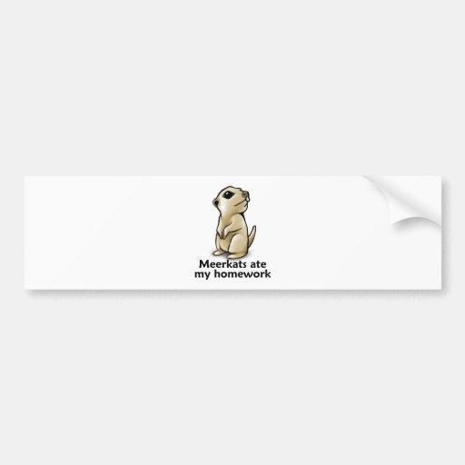 Meerkats ate my homework car bumper sticker