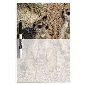 Meerkats Dry-Erase Board