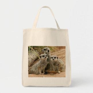 Meerkats en el tote orgánico del puesto de bolsa tela para la compra