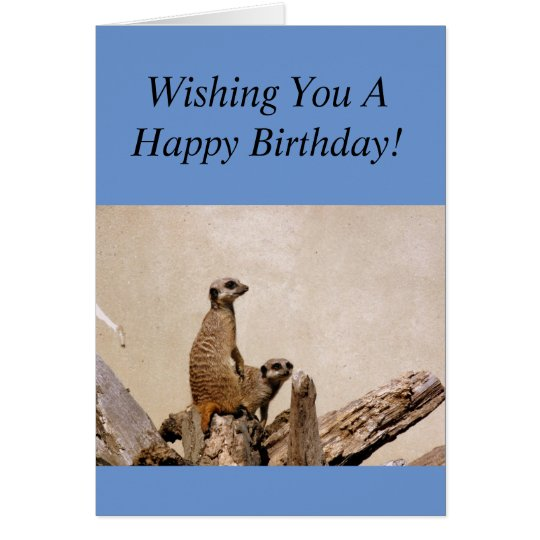 Meerkats Happy Birthday Greeting! Card