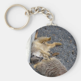 Meerkats Keychains
