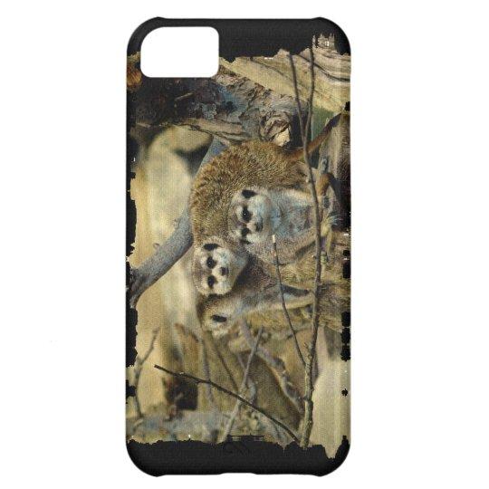 Meerkats, mangosta, fauna africana, animales funda para iPhone 5C