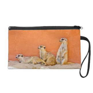 Meerkats On An Orange Wall Wristlet Purse