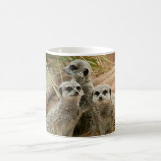 Meerkats on the lookout classic white coffee mug