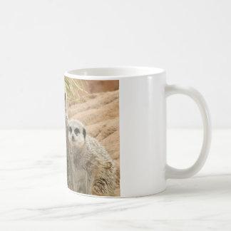 Meerkats on the lookout coffee mugs