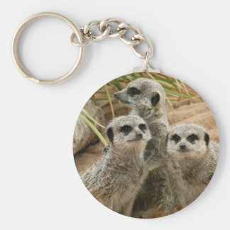 Meerkats on the lookout key chain