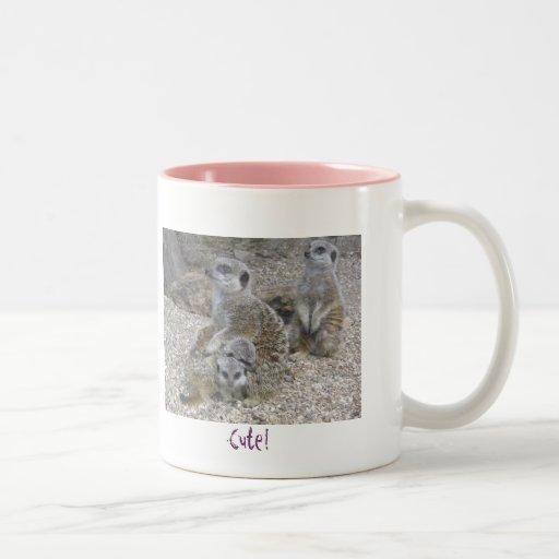 Meerkats Rule Mug
