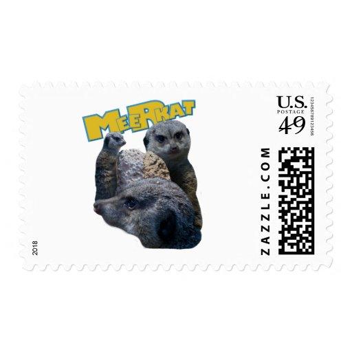Meerkats Sellos