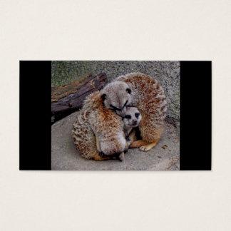 Meerkats soñoliento tarjetas de visita