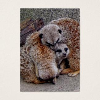 Meerkats soñoliento tarjetas de visita grandes