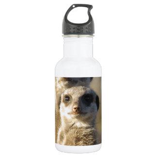 Meerkats Stainless Steel Water Bottle