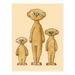 Meerkats. Tarjeta Postal