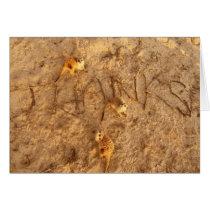 Meerkats Thanks - Card