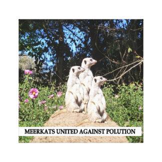 Meerkets Against Polution Canvas Print