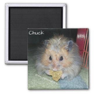 Meet Chuck Fridge Magnets
