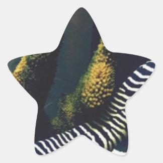 Meet Frank Star Sticker