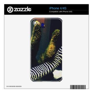 Meet Frank the Zebra Moray Eel Skin For The iPhone 4