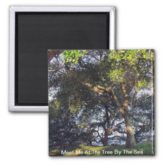 Meet Me At The Tree By The Sea 2 Inch Square Magnet