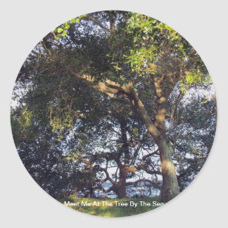 Meet Me At The Tree By The Sea Classic Round Sticker