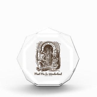 Meet Me In Wonderland (Queen Alice Frog) Award