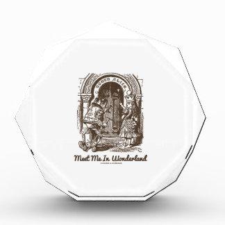Meet Me In Wonderland (Queen Alice Frog) Acrylic Award