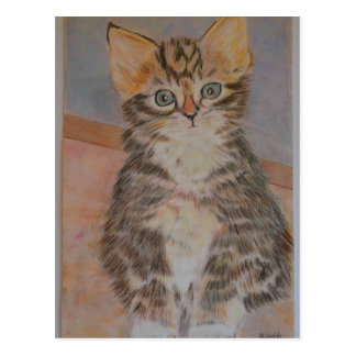 Meet Nelson, a super cute kitten design Postcard