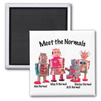 Meet the Normals Fridge Magnet