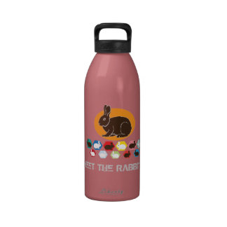 Meet the rabbits water bottle