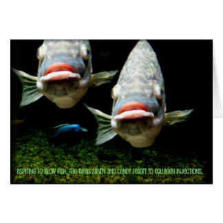 Meet the Twins ~ funny fish ~ everyday note card