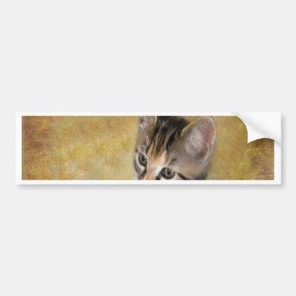 Meet Tiger Bumper Sticker