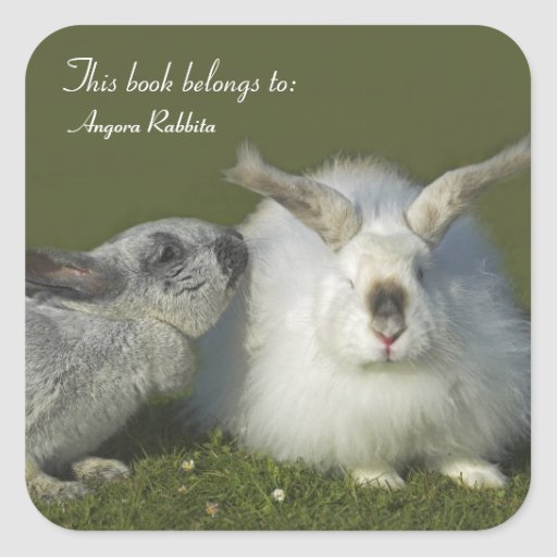 Meeting of the Rabbits - Giant Angora Bunny Square Sticker