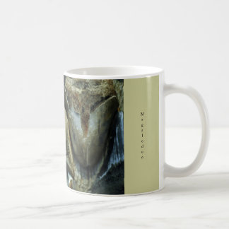 Megalodon Fossil Shark Teeth Mug